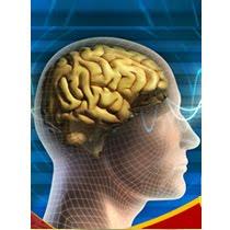 Maestría Internacional en Neurociencia