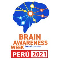 https://sites.google.com/a/neurocienciaperu.org/laboratorio-de-neurociencias/semana-mundial-del-cerebro-2021-lima-peru